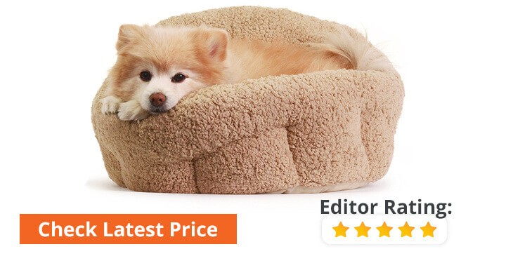 discount orthopedic dog beds