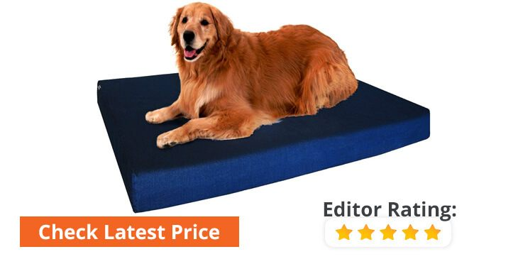 best rated orthopedic dog beds reviews