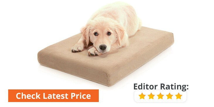 buy discount orthopedic dog beds