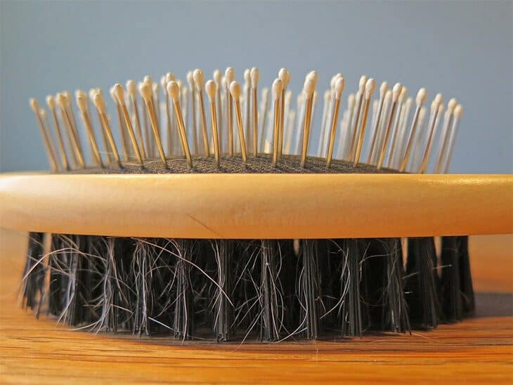 Dog Grooming Brush Types