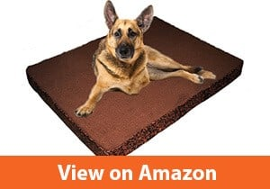 XL-Luxury-Orthopedic-Lounger-Pet-Bed