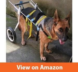 Adjustable Dog Wheelchair (L size)