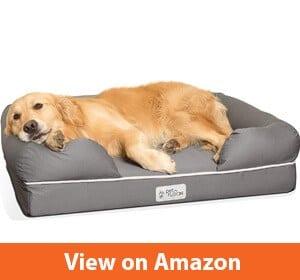 Best Puppy Beds
