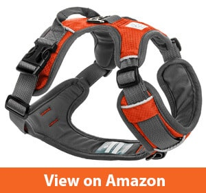 Embark Adventure Dog Harness, Easy On and Off with Front and Back Leash Attachments & Control Handle - No Pull Training, Size Adjustable and Non-Choke