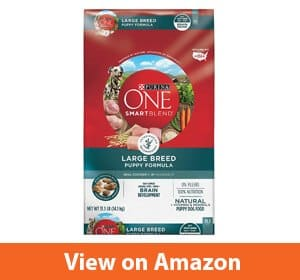 Purina ONE SmartBlend Natural Puppy Dry Dog Food