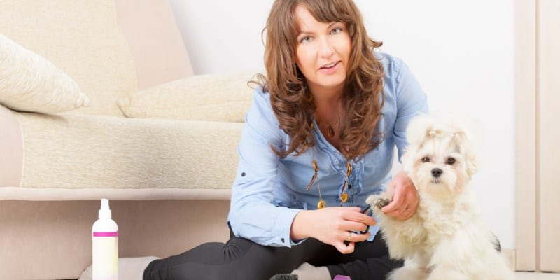 What to Consider When Buying a Dog Nail Clipper with Sensor