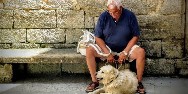 Senior dog and elderly man resting