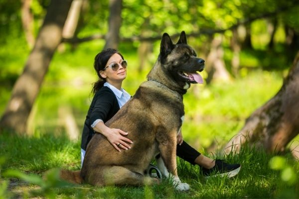 Woman and American Akita sitting outdoors